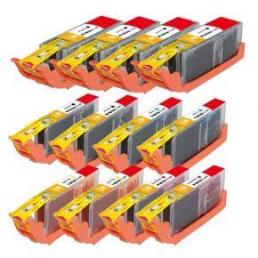 Ensemble de 12 Cartouches d'encre Compatible Canon PGI-250XL & CLI-251XL Haut Rendement